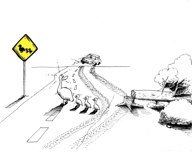 Popular Culture Environmental Cartoon:  Animal Rights at the Duck Crossing 2011Copyright Iranian American Cartoonist Kaveh Adel